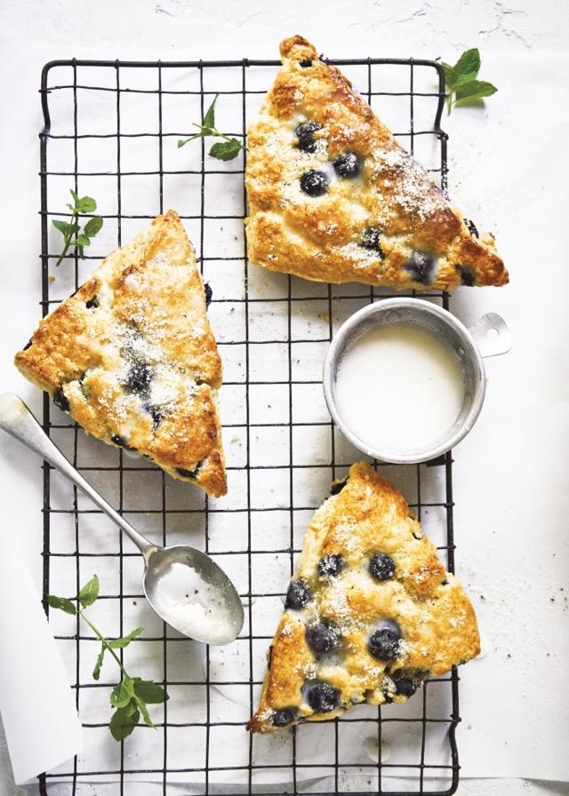 Blueberry Cream Scones from The Harvest Baker